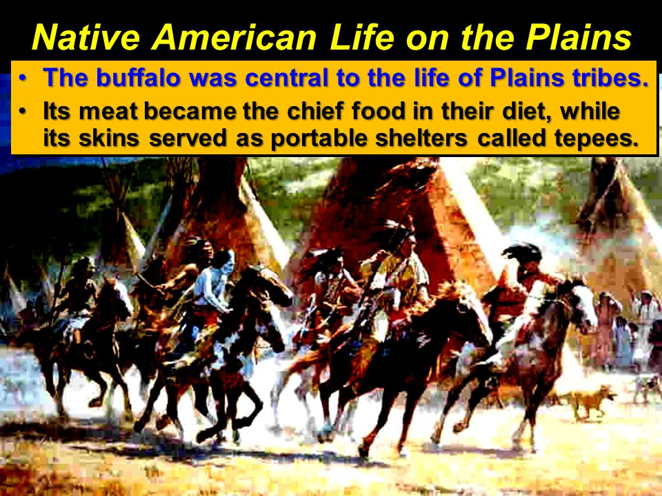 Native American Life on the Plains