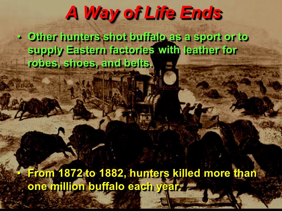 A Way of Life Ends Other hunters shot buffalo as a sport or to supply Eastern factories with leather for robes, shoes, and belts.