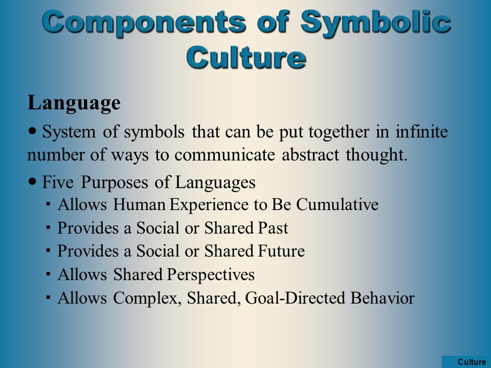 Chapter 3 Culture Ppt Video Online Download