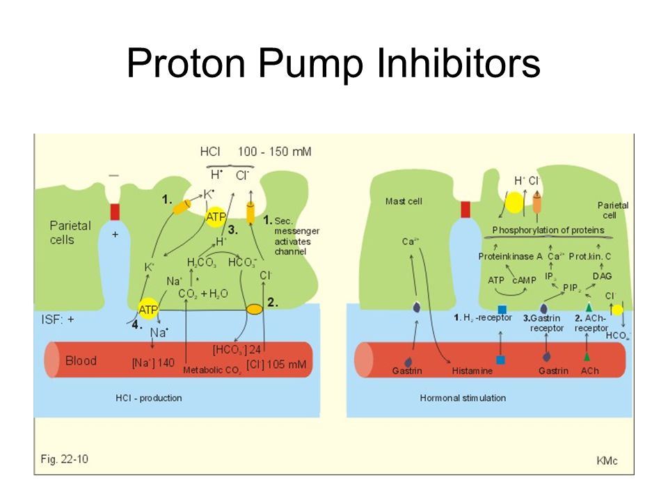 Mon Proton Pump Inhibitors Wallpaper Collections