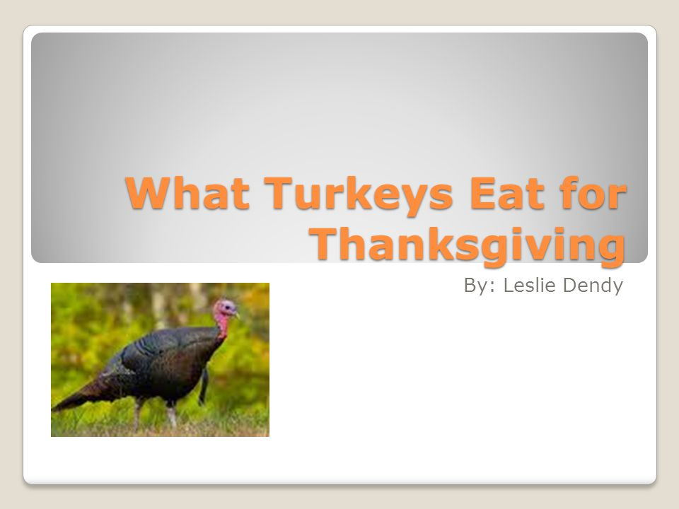 What eat for thanksgiving 100 images where to eat for What to serve for thanksgiving lunch