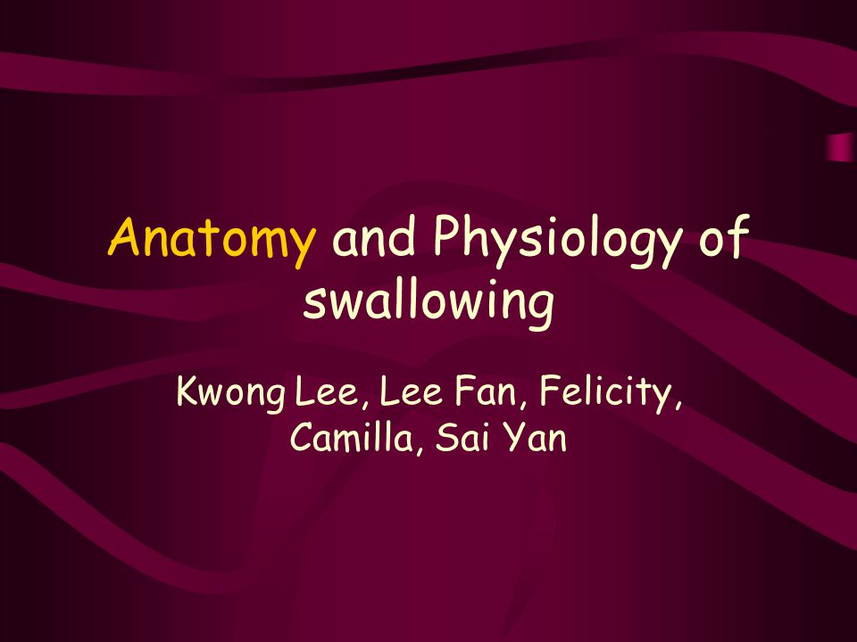 Anatomy and Physiology of swallowing - ppt video online download