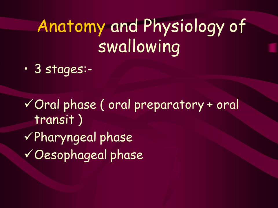 Anatomy of swallowing process