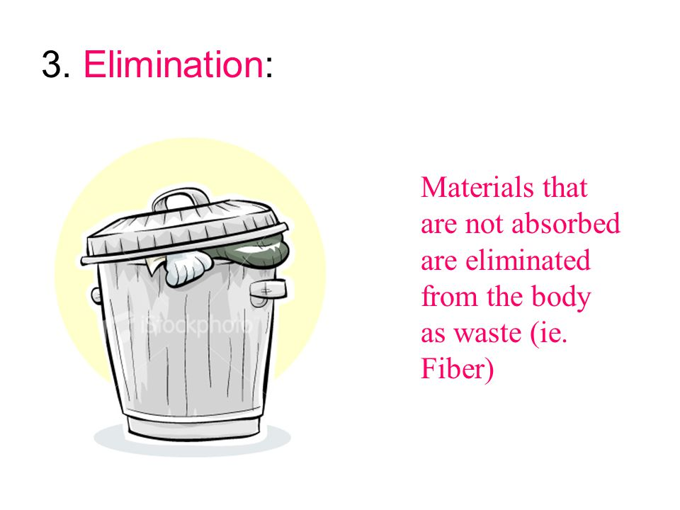 3. Elimination: Materials that are not absorbed are eliminated from the body as waste (ie. Fiber)