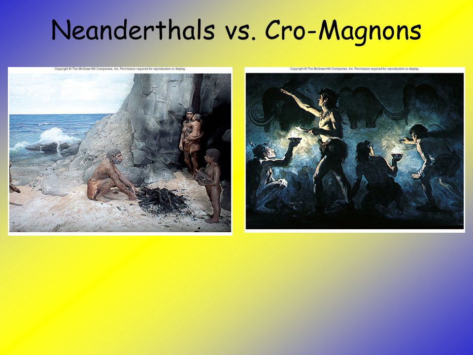 the cro magnons and neanderthals Caveman is a general name used to encompass several groups of fossils including neanderthals, cro-magnons, homo-erectus, denisovans, and homo floresiensis (also known as hobbits.
