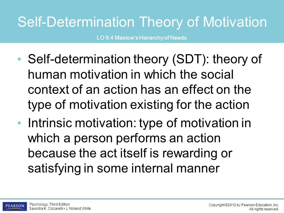 a model of contextual motivation in Reciprocal td and bu effects between athletes' contextual motivation toward  their sport and  model of intrinsic and extrinsic motivation (vallerand, 1997) are .