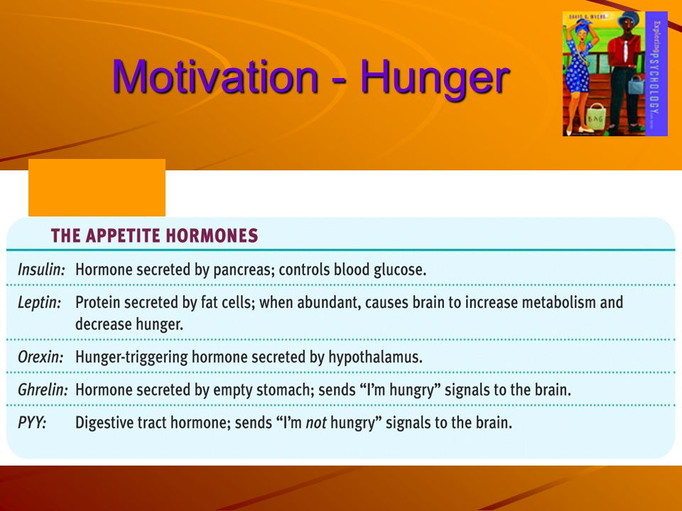 Motivation - Hunger