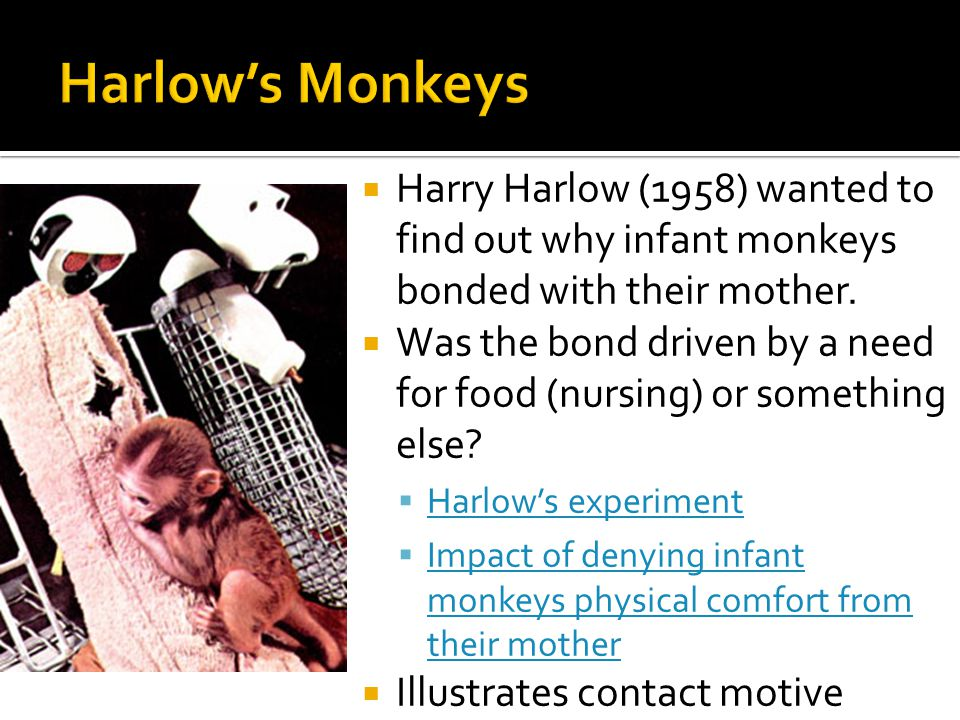 Harry Harlow | Psychology Wiki | FANDOM powered by Wikia