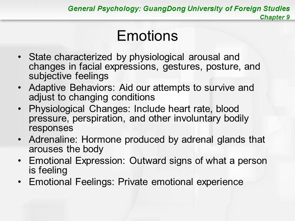 an overview of the sources of arousal motivation and emotional arousal
