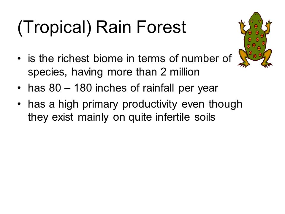 (Tropical) Rain Forest