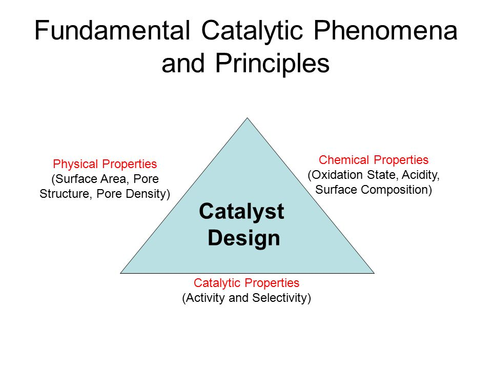 Fundamental Catalytic Phenomena and Principles
