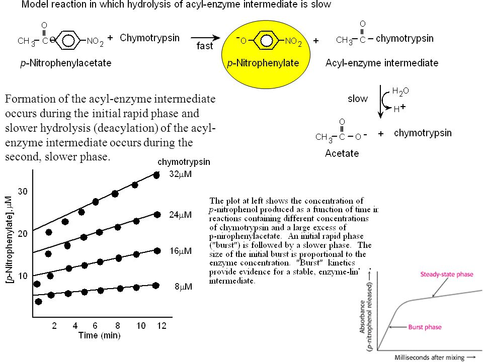 divalent carbon intermediate phase transfer catalysis Aspects related to recycling of the tin chloride catalyst in phase  international scholarly research notices is  due to mass transfer.