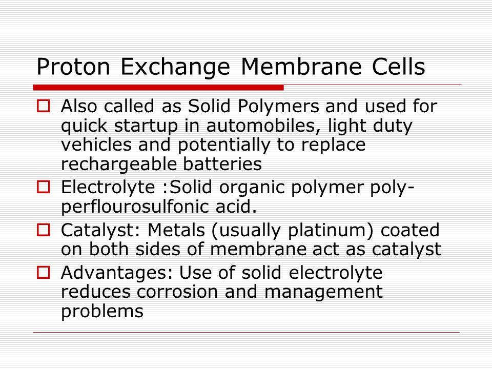 Proton Exchange Membrane Cells