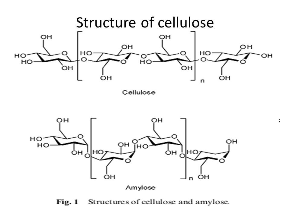 diagram of cellulose diagram of inside of a 747 hydrolysis of cellulose to glucose by solid acid catalysts ...
