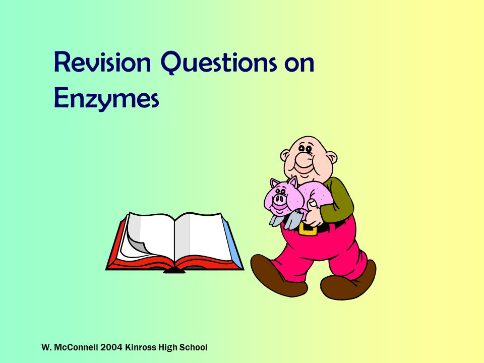 Revision Questions on Enzymes