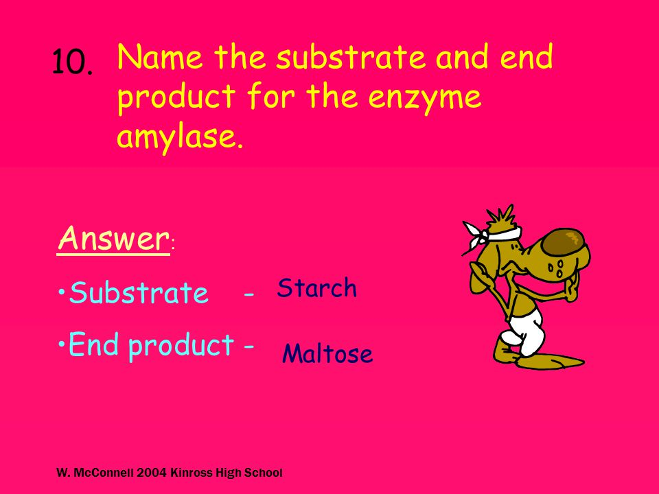 Name the substrate and end product for the enzyme amylase. 10.