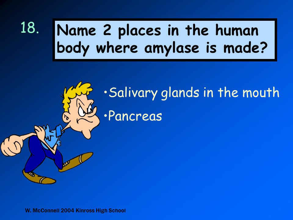 Name 2 places in the human body where amylase is made