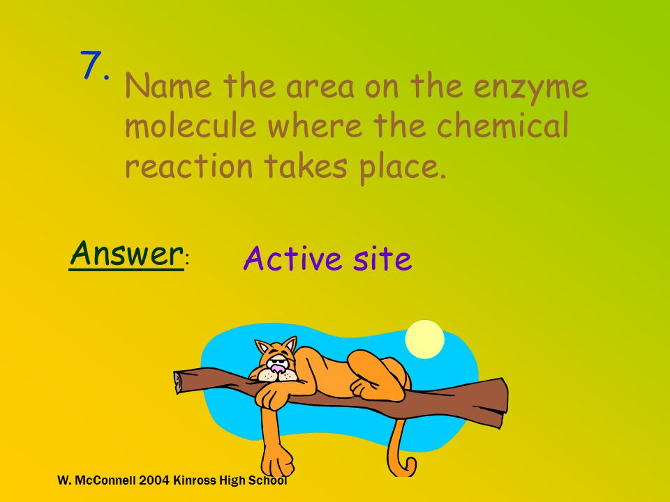7. Name the area on the enzyme molecule where the chemical reaction takes place. Answer: Active site.