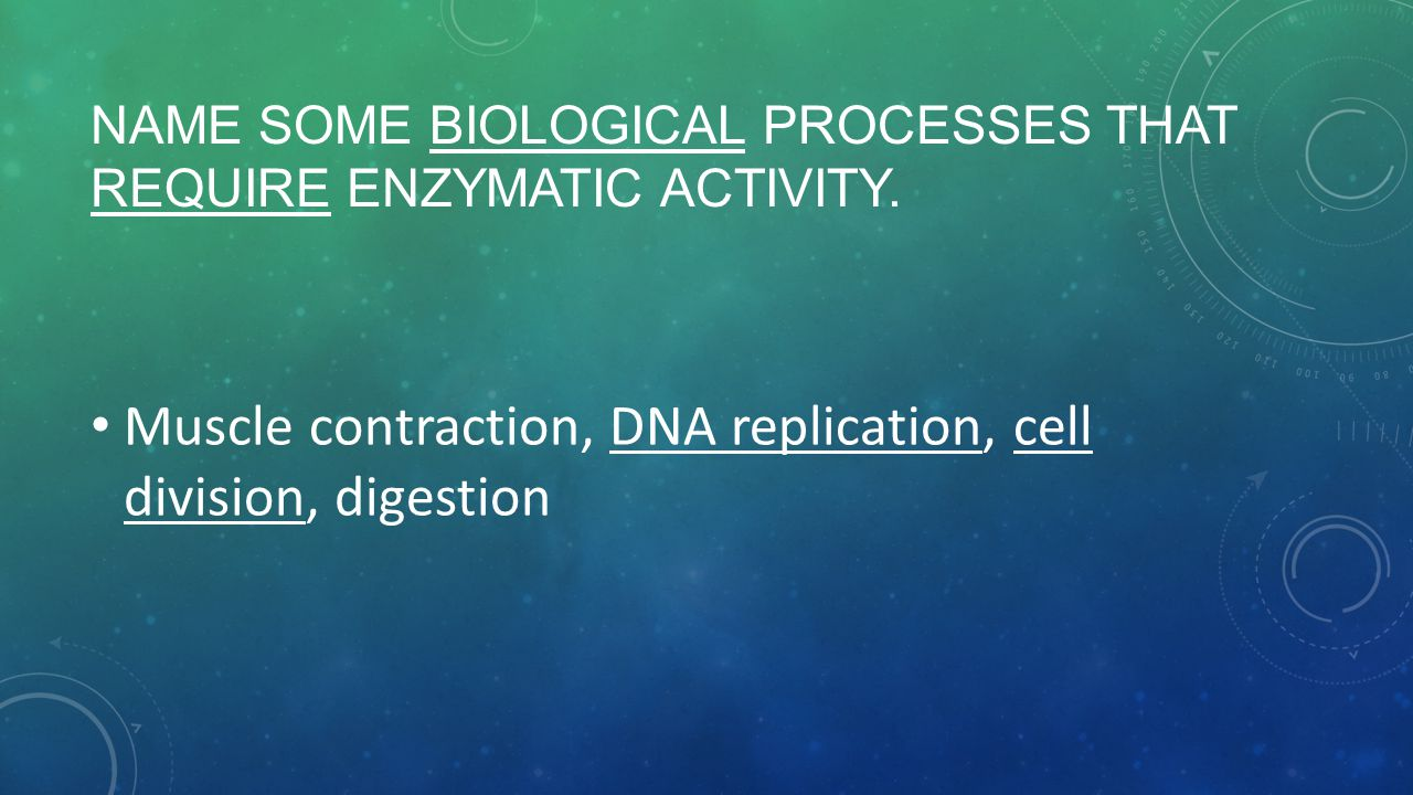Name some biological processes that require enzymatic activity.