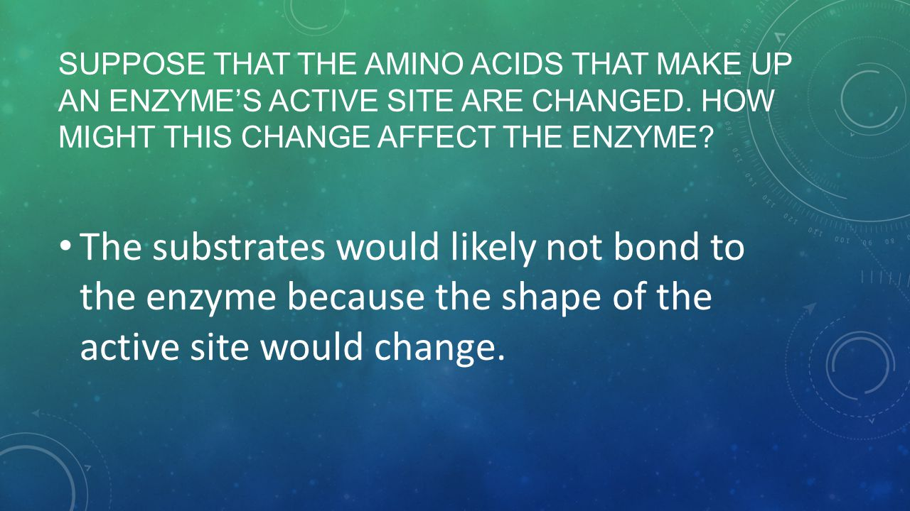 Suppose that the amino acids that make up an enzyme's active site are changed. How might this change affect the enzyme