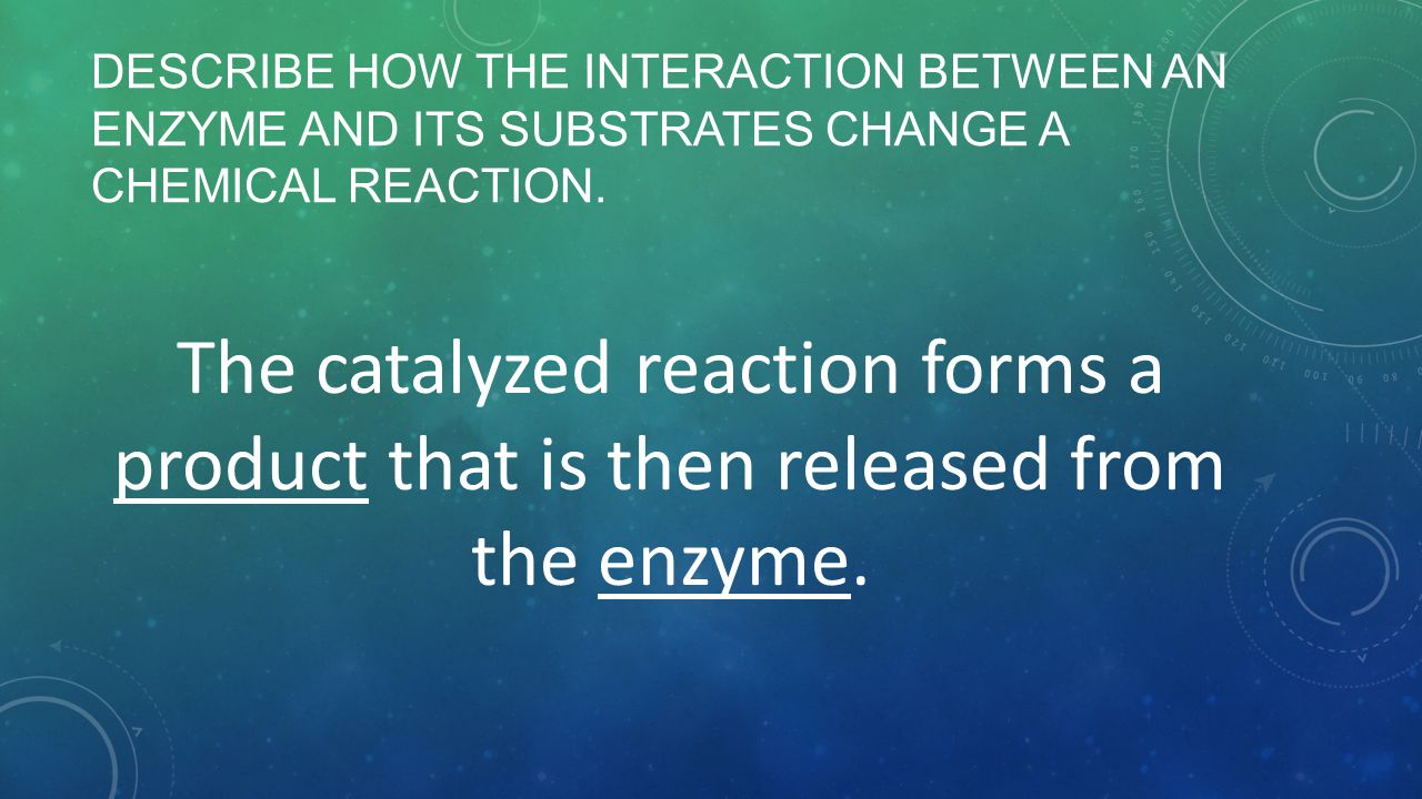 Describe how the interaction between an enzyme and its substrates change a chemical reaction.