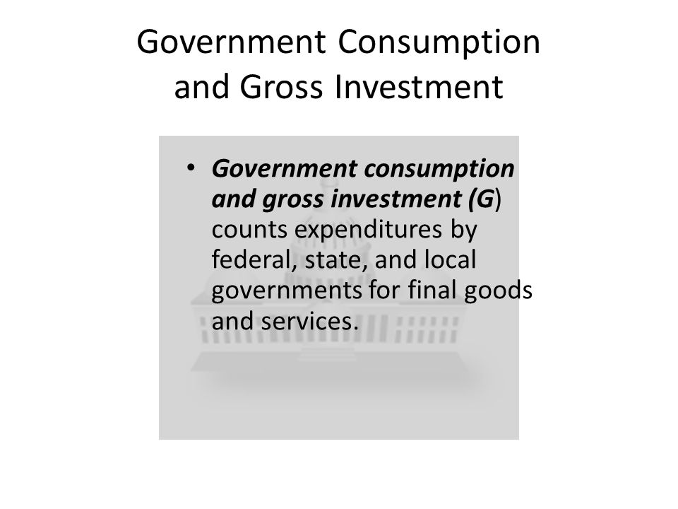 Government Consumption and Gross Investment