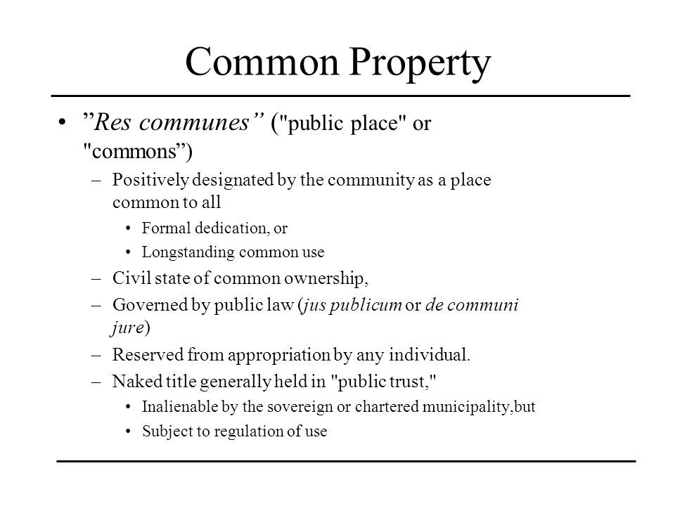 Common Property Res communes ( public place or commons )