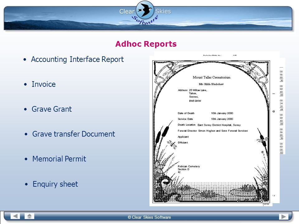 Accounting Interface Report