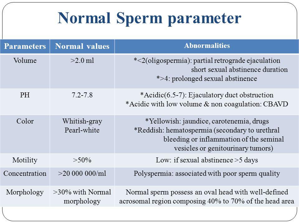 Absence of sperm definition