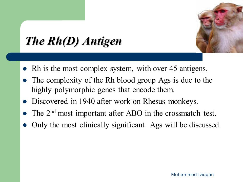 The Rh(D) Antigen Rh is the most complex system, with over 45 antigens.