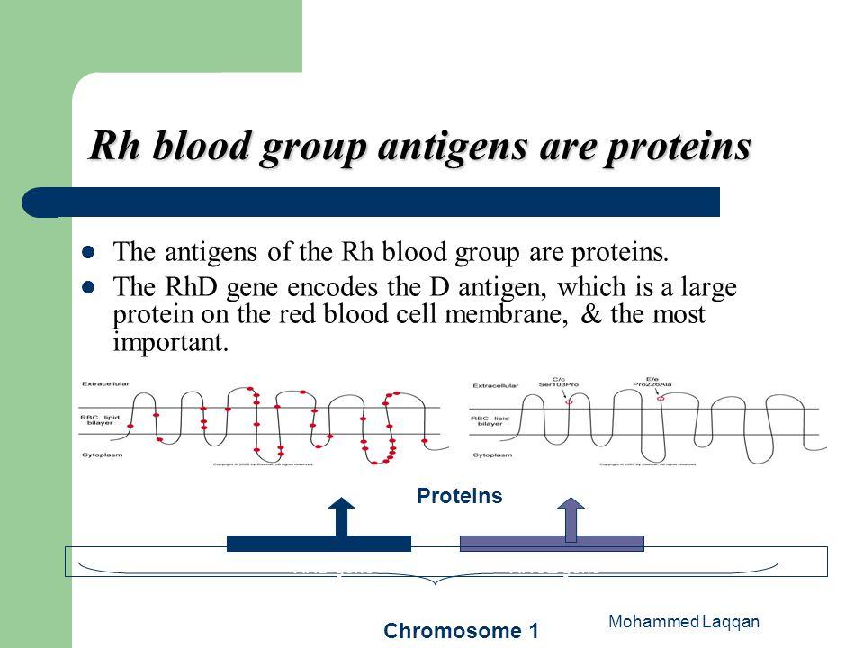 blood group d