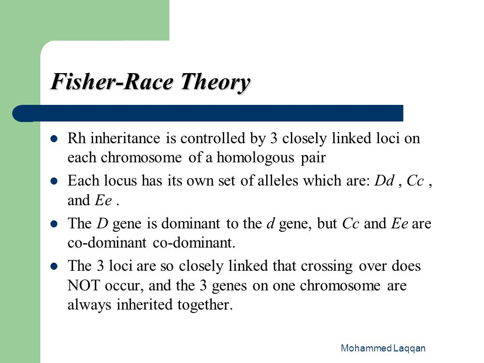 Fisher-Race Theory Rh inheritance is controlled by 3 closely linked loci on each chromosome of a homologous pair.