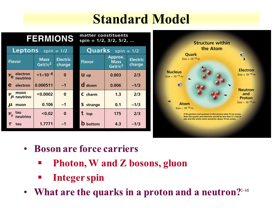 Standard Model Boson are force carriers Photon, W and Z bosons, gluon