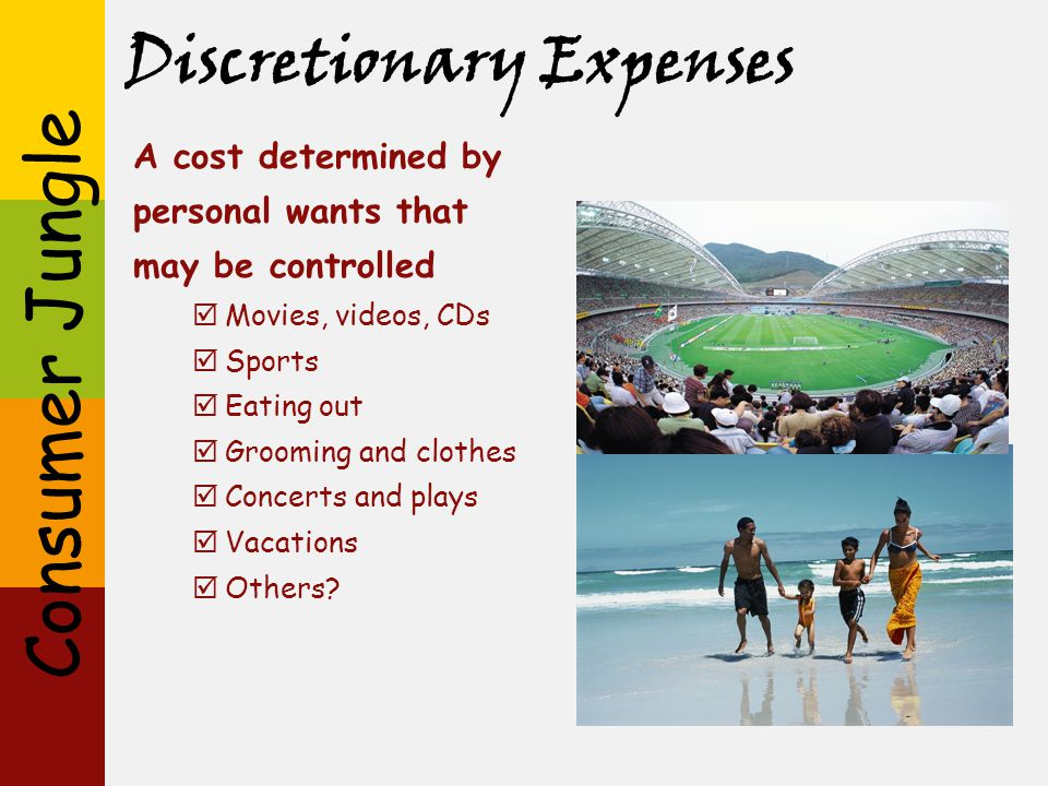 Discretionary Expenses