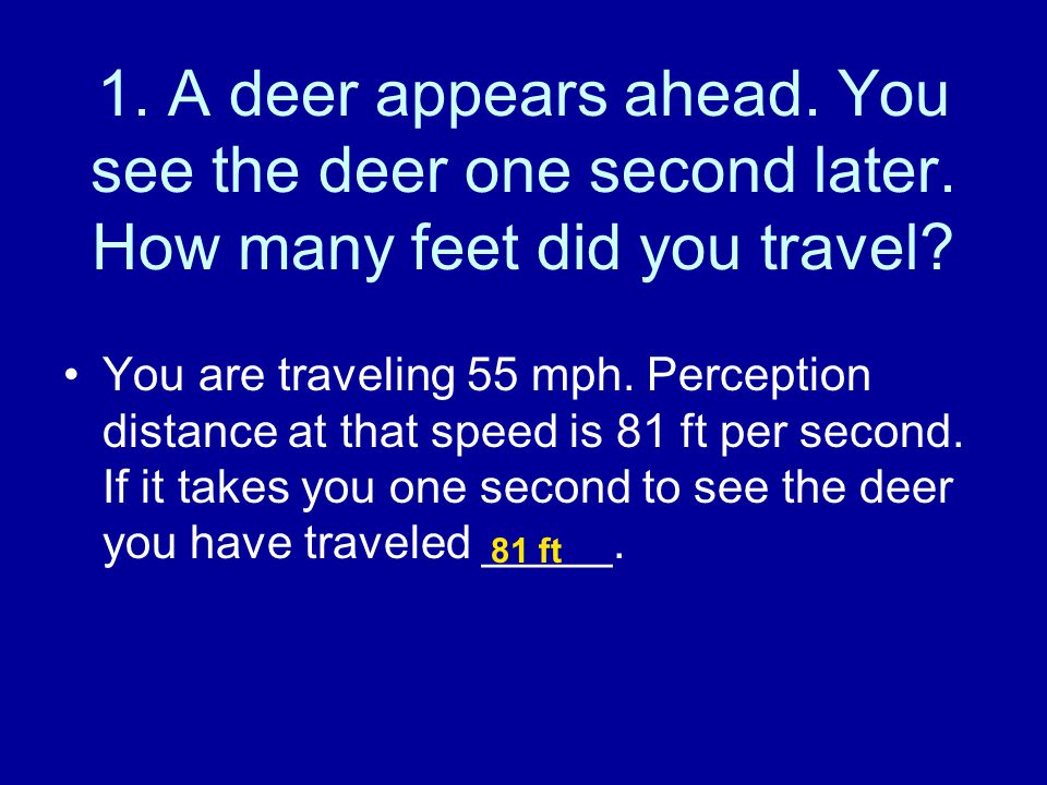 1. A deer appears ahead. You see the deer one second later