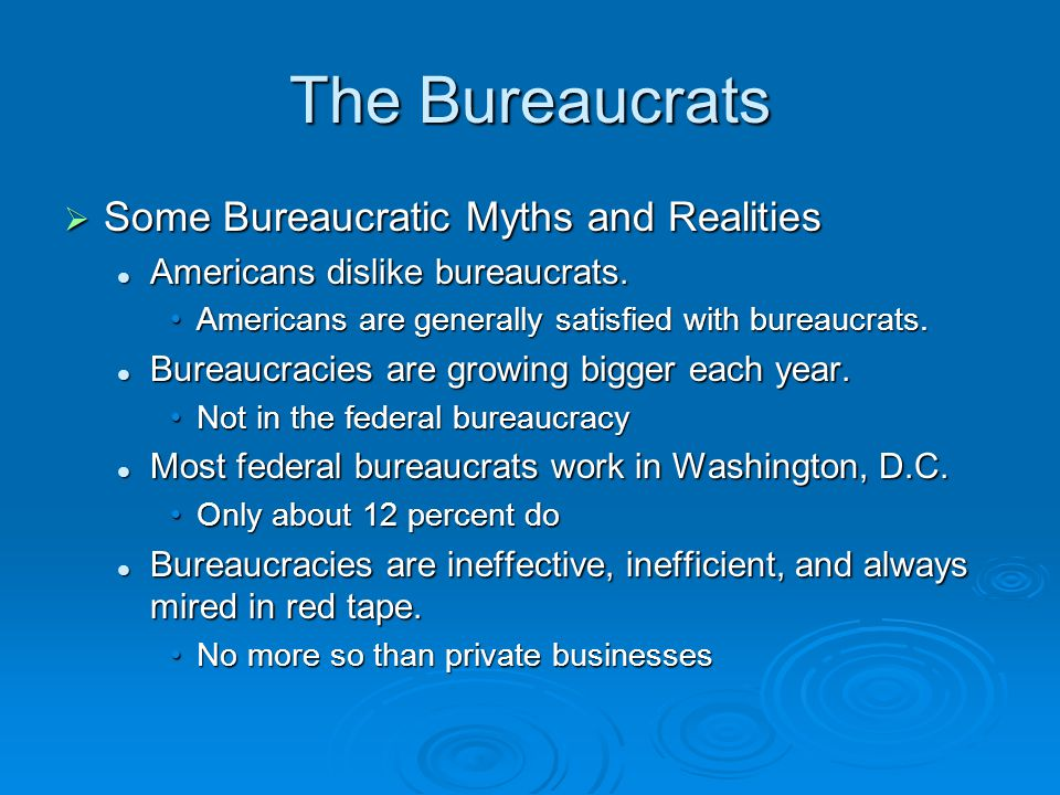 Bureaucracy essays