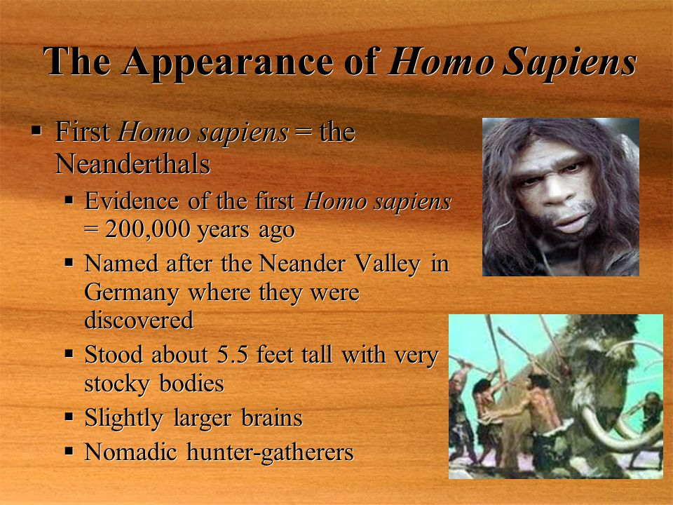"""Chapter 1 Notes """"Human Beginnings"""". - ppt download"""
