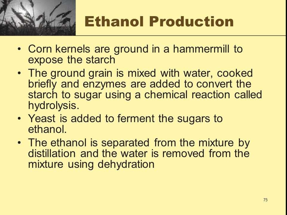 a comparison of wet mill ethanol production and dry mill ethanol production in chemistry Our analysis again concludes that the production of ethanol from corn is a  positive net energy generator  compared to our state-of-the-art figures of  14,800 btus per gallon9  table 3: ethanol processing energy use for wet and  dry mills average(na  only for fuel but which potentially has a high chemical  value.