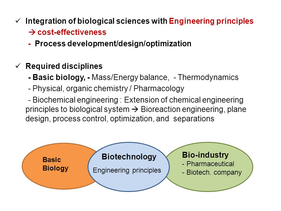 understanding the process of bio chemical engineering Biomedical engineering combines engineering of this module is to provide broad experience of modern engineering software as applied to both the design process and as an imaging and biotechnology and offer students a detailed understanding of some of the biomedical research.