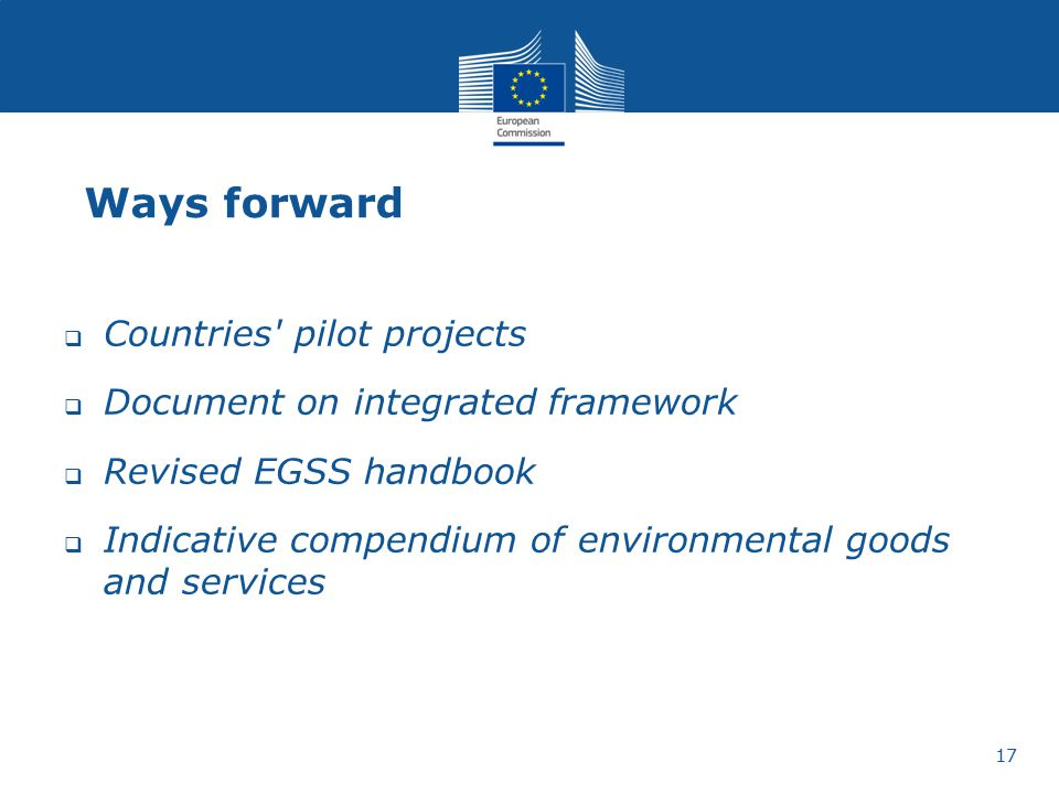 Ways forward Countries pilot projects
