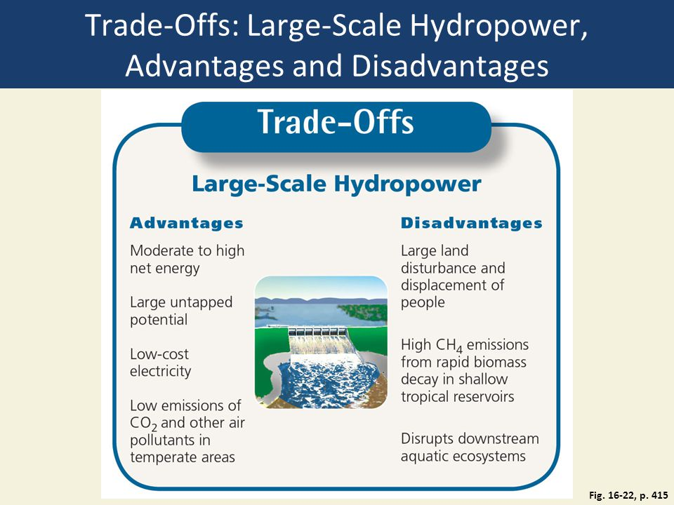 advantages and disadvantages of a large