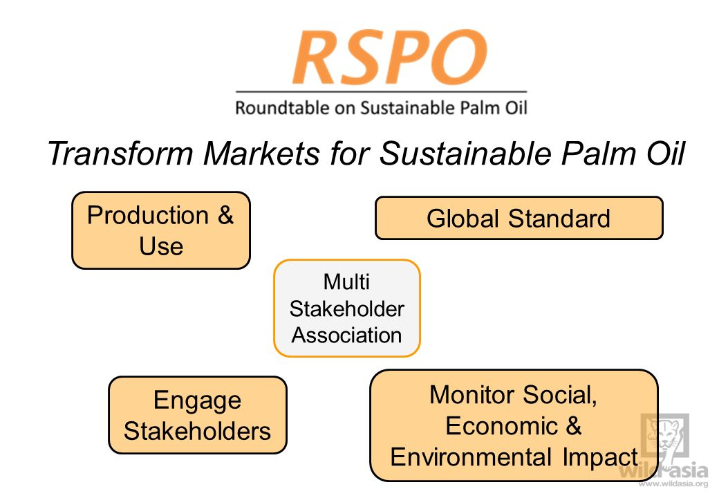 Transform Markets for Sustainable Palm Oil