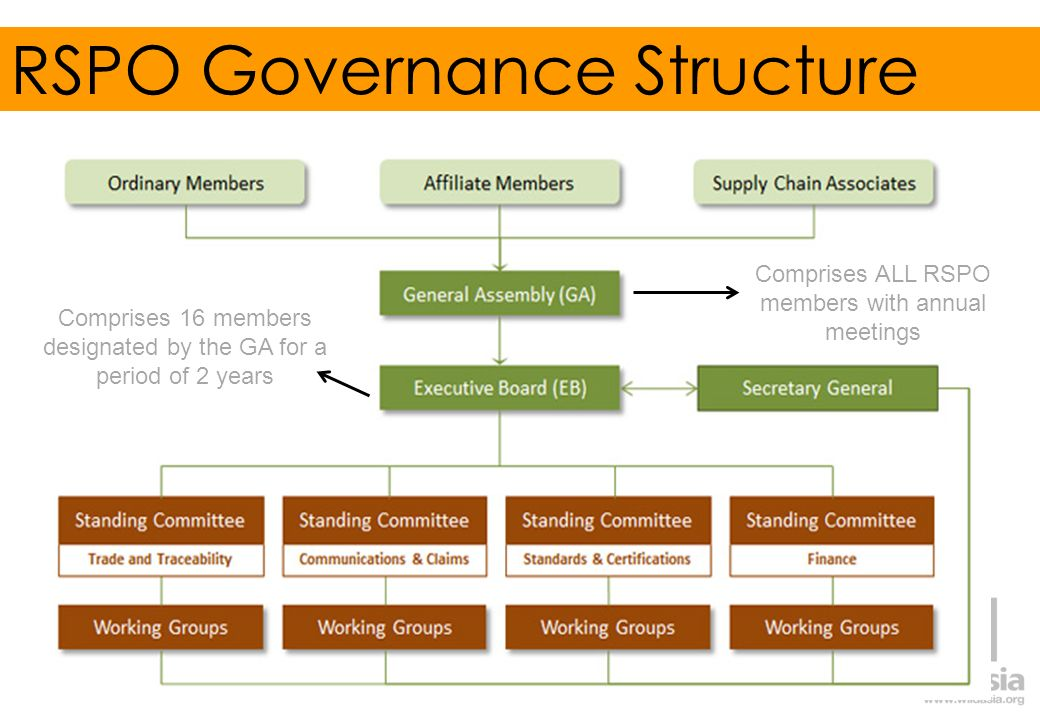 RSPO Governance Structure
