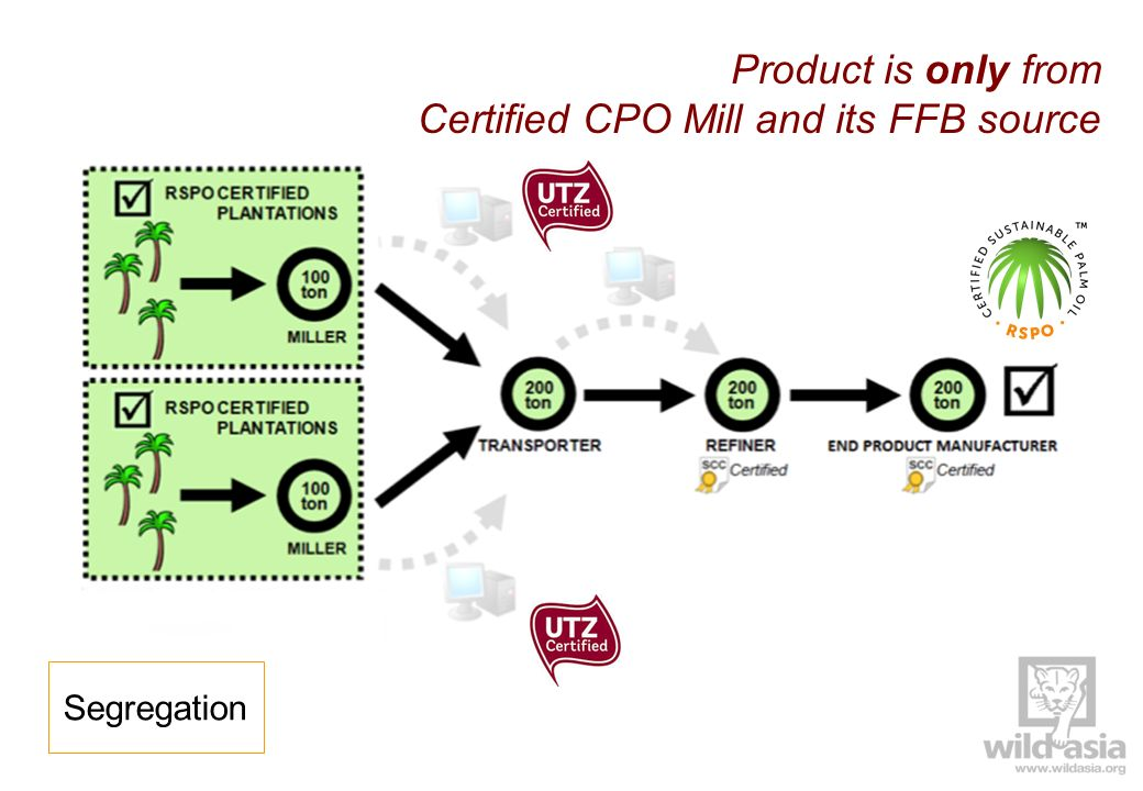 Certified CPO Mill and its FFB source