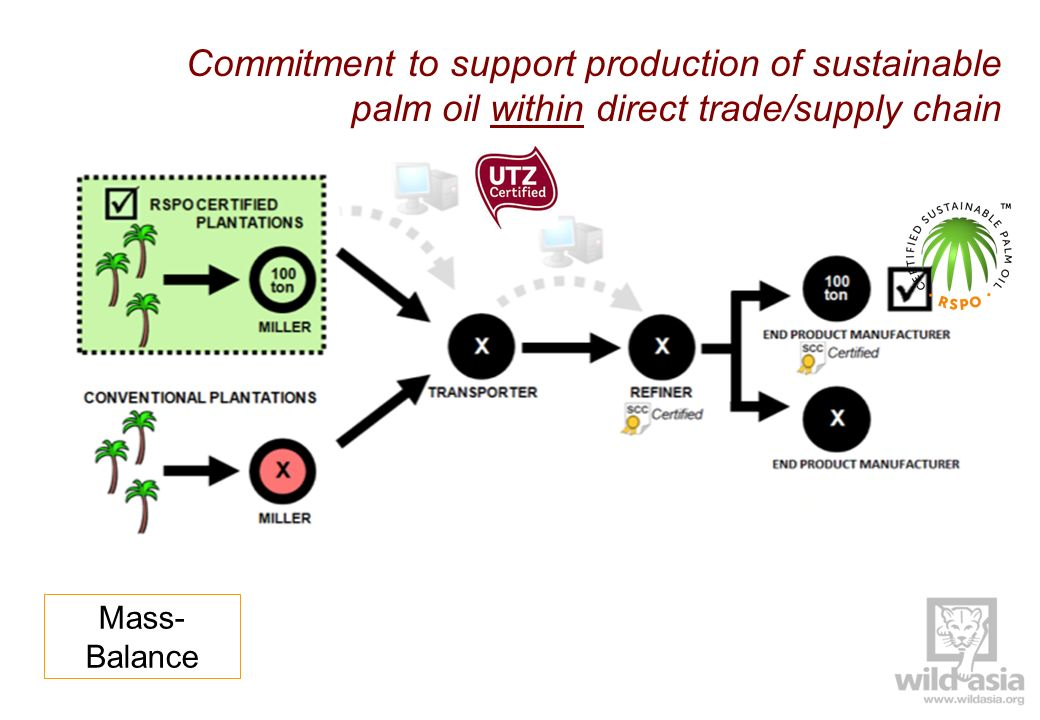 Commitment to support production of sustainable palm oil within direct trade/supply chain