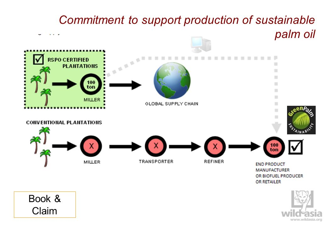 Commitment to support production of sustainable palm oil