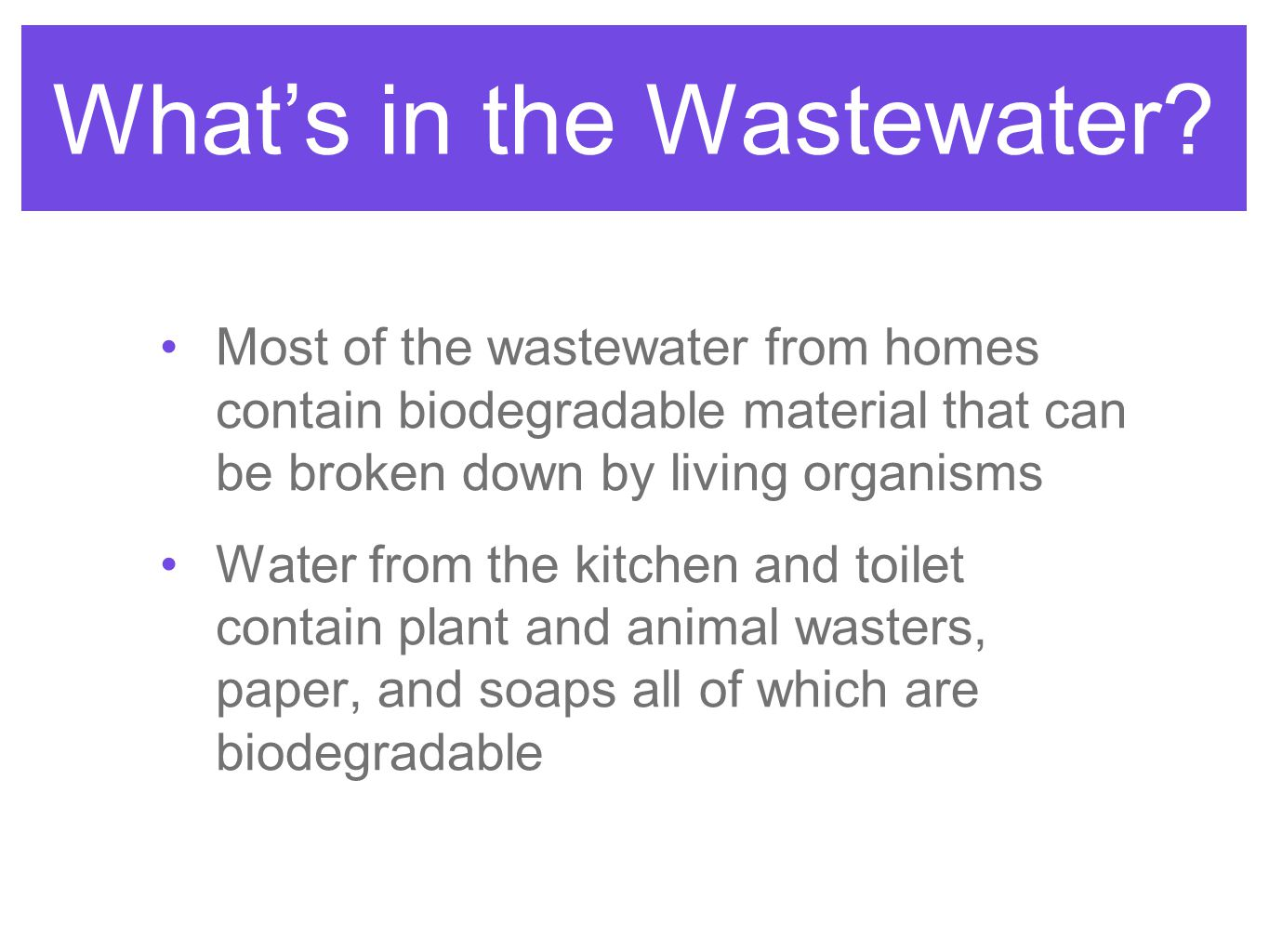 What's in the Wastewater
