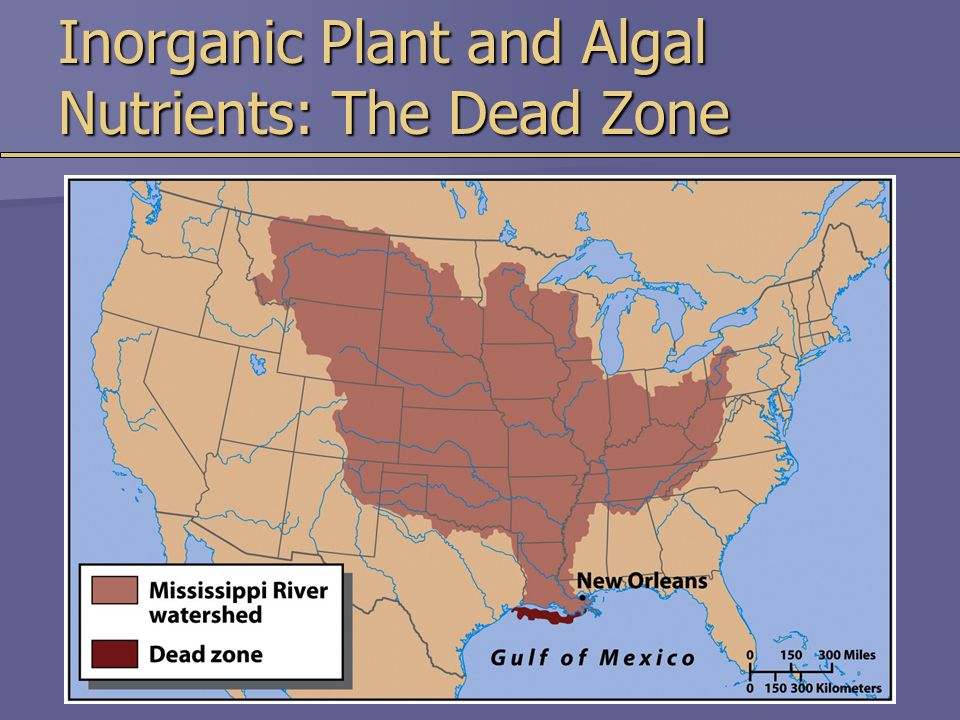 Inorganic Plant and Algal Nutrients: The Dead Zone