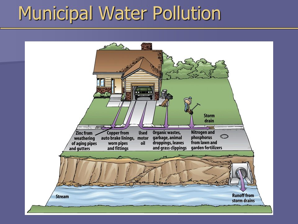 Municipal Water Pollution