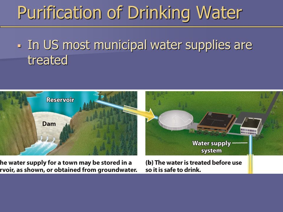Purification of Drinking Water